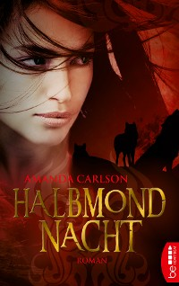 Cover Halbmondnacht