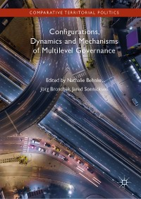 Cover Configurations, Dynamics and Mechanisms of Multilevel Governance
