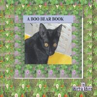 Cover A Boo Bear Book