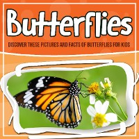 Cover Butterflies: Discover These Pictures And Facts Of Butterflies For Kids