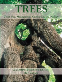 Cover Trees