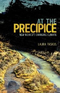 Cover At the Precipice