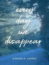 Cover Every Day We Disappear