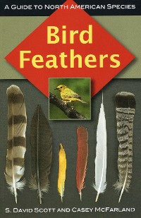 Cover Bird Feathers