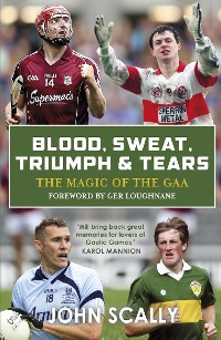 Cover Blood, Sweat, Triumph and Tears