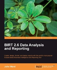 Cover BIRT 2.6 Data Analysis and Reporting
