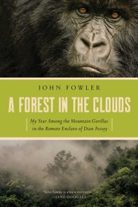 Cover Forest in the Clouds