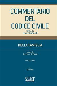 Cover Commentario Codice della Famiglia vol. II