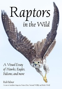 Cover Raptors in the Wild