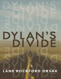 Cover Dylan's Divide