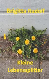 Cover Kleine Lebenssplitter