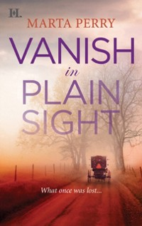 Cover Vanish in Plain Sight (Brotherhood of the Raven, Book 2)