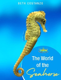 Cover Seahorse Activity Workbook For Kids ages 4-8