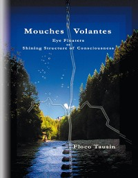 Cover Mouches Volantes - Eye Floaters as Shining Structure of Consciousness