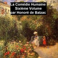 Cover La Comedie Humaine volume 6 - Scene de la vie de province tome II