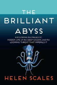 Cover The Brilliant Abyss
