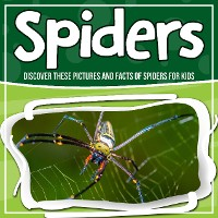 Cover Spiders: Discover These Pictures And Facts Of Spiders For Kids