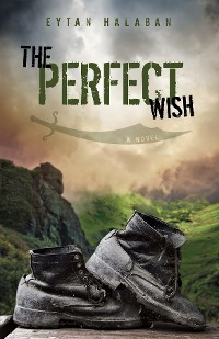 Cover The Perfect Wish