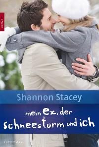Cover Mein Ex, der Schneesturm und ich