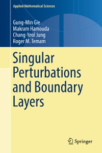 Cover Singular Perturbations and Boundary Layers