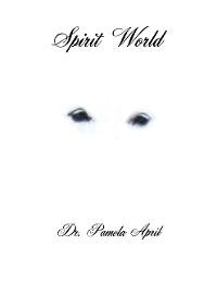 Cover Spirit World