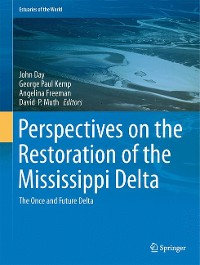 Cover Perspectives on the Restoration of the Mississippi Delta