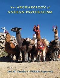 Cover The Archaeology of Andean Pastoralism