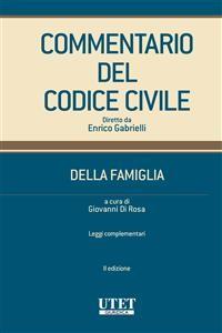 Cover Commentario Codice della Famiglia vol. III