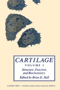 Cover Cartilage V1