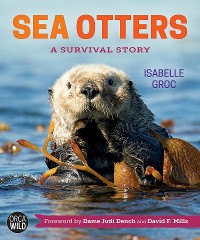 Cover Sea Otters