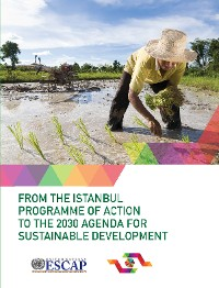 Cover From the Istanbul Programme of Action to the 2030 Agenda for Sustainable Development