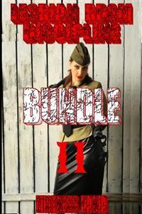 Cover Lesbian BDSM Discipline Bundle II