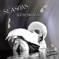 Cover Seasons with Swans