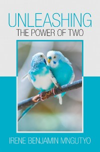 Cover Unleashing the Power of Two