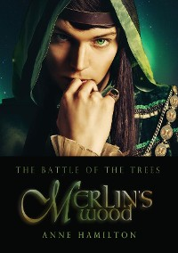 Cover Merlin's Wood