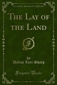 Cover The Lay of the Land