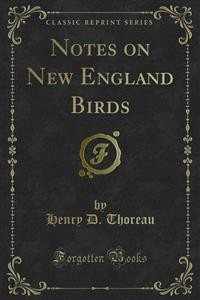 Cover Notes on New England Birds