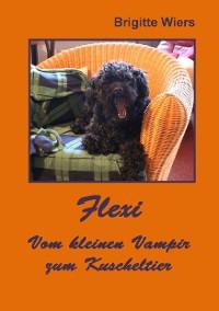 Cover Flexi - Vom kleinen Vampir zum Kuscheltier