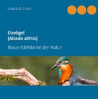Cover Eisvögel (Alcedo atthis)