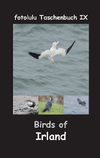 Cover Birds of Irland