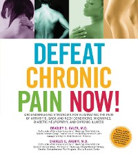 Cover Defeat Chronic Pain Now!