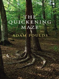 Cover The Quickening Maze