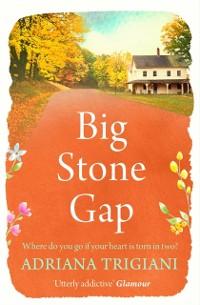 Cover Big Stone Gap