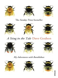 Cover A Sting in the Tale