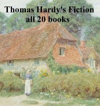 Cover Thomas Hardy's Fiction: all 20 books