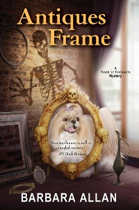 Cover Antiques Frame
