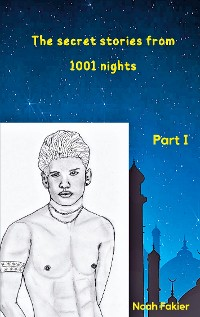 Cover The secret stories from 1001 nights