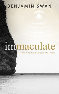 Cover immaculate