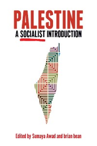 Cover Palestine: A Socialist Introduction