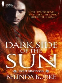 Cover Dark Side of the Sun